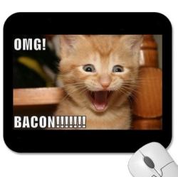 Bacon LOL Cat